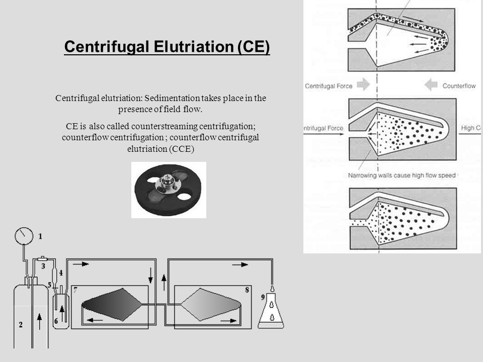 Centrifugal Elutriation (CE)