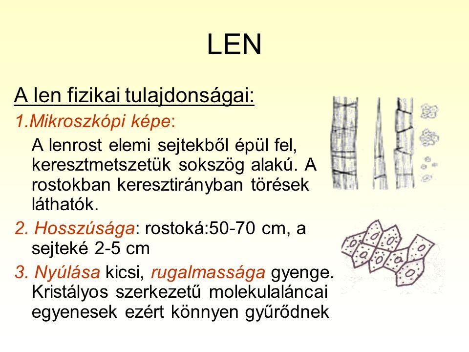 LEN A len fizikai tulajdonságai: 1.Mikroszkópi képe:
