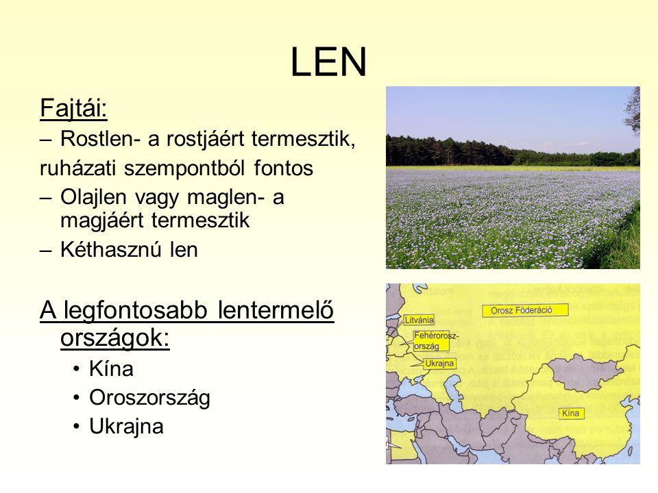LEN Fajtái: A legfontosabb lentermelő országok: