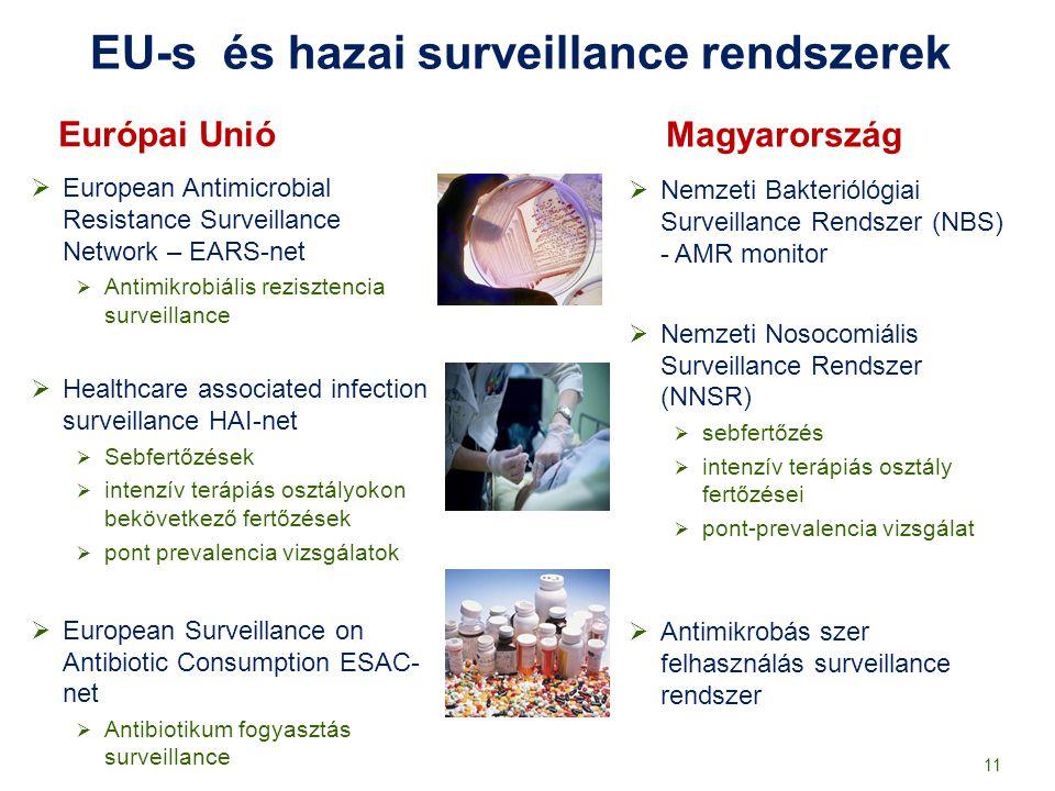EU-s és hazai surveillance rendszerek