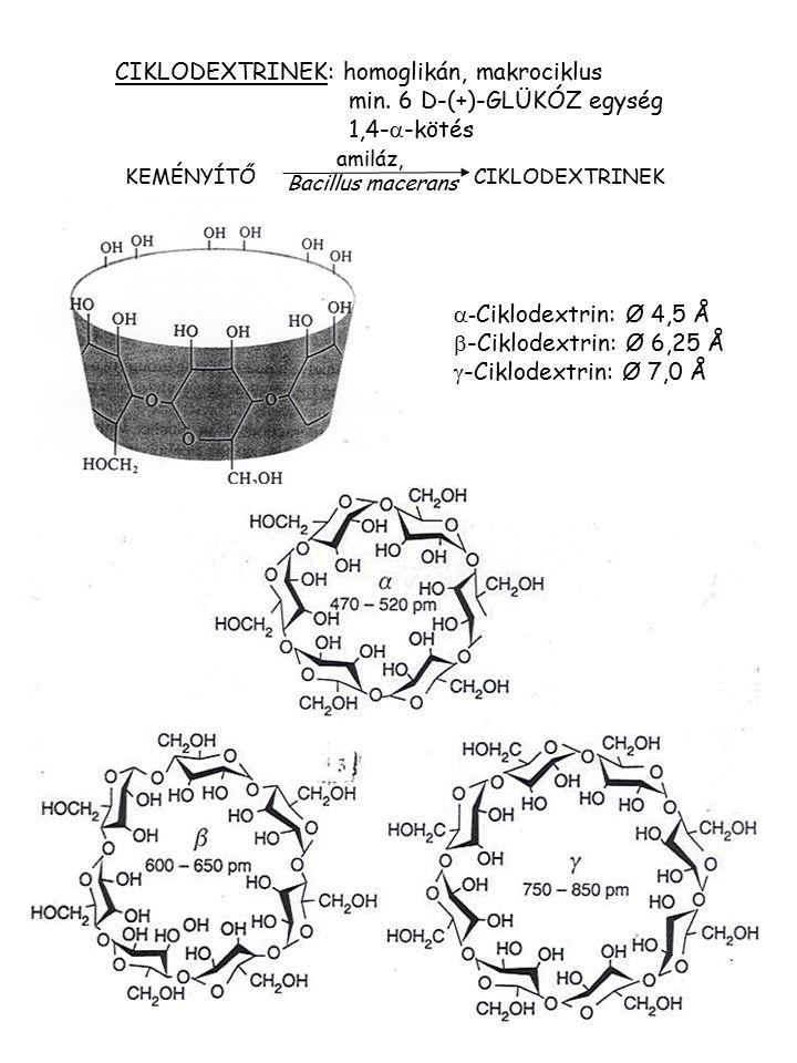 CIKLODEXTRINEK: homoglikán, makrociklus