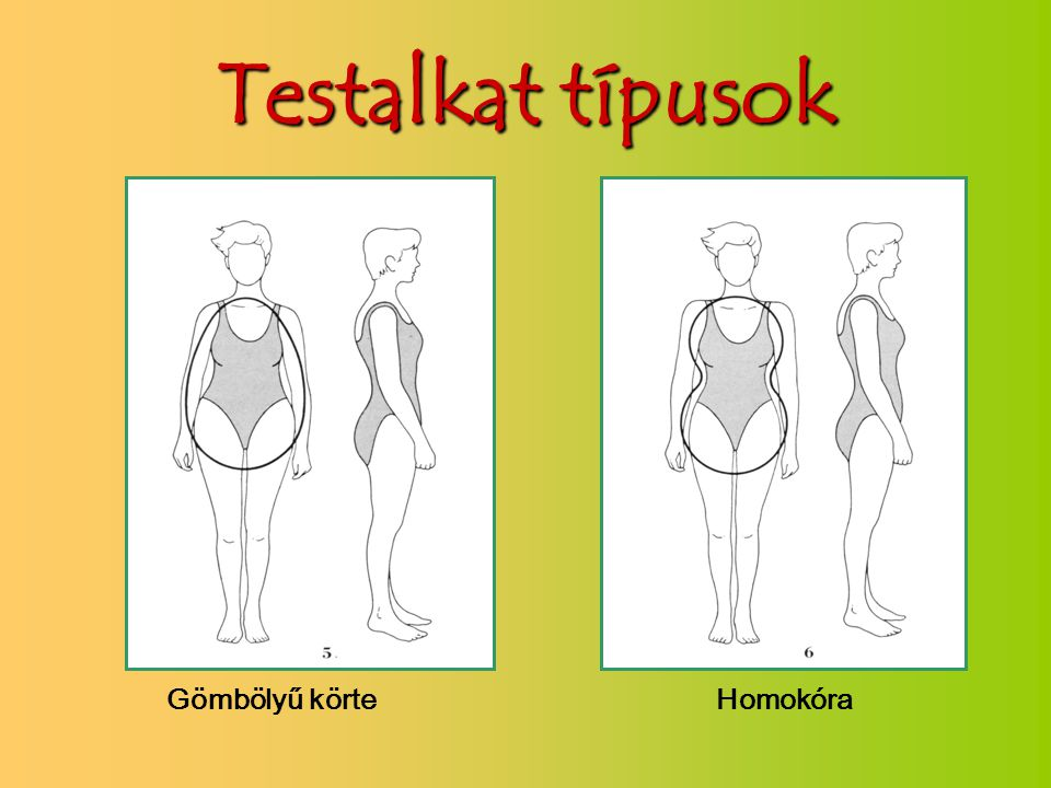 Testalkat típusok Gömbölyű körte Homokóra
