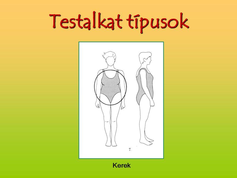 Testalkat típusok Kerek