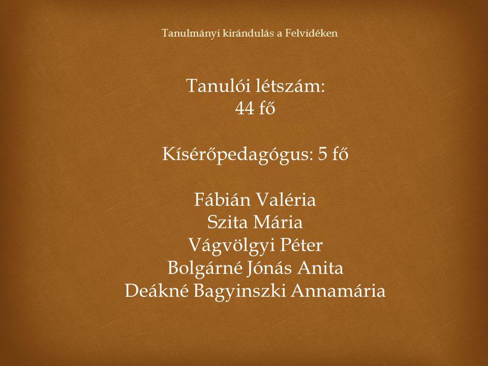 Deákné Bagyinszki Annamária