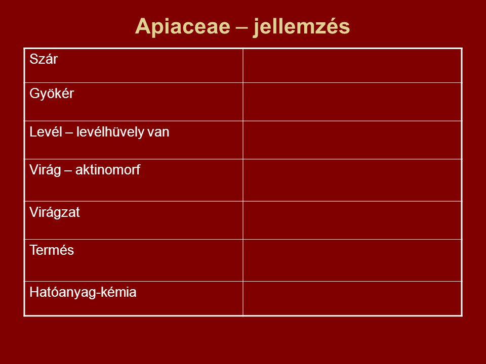 Apiaceae – jellemzés Szár Gyökér Levél – levélhüvely van