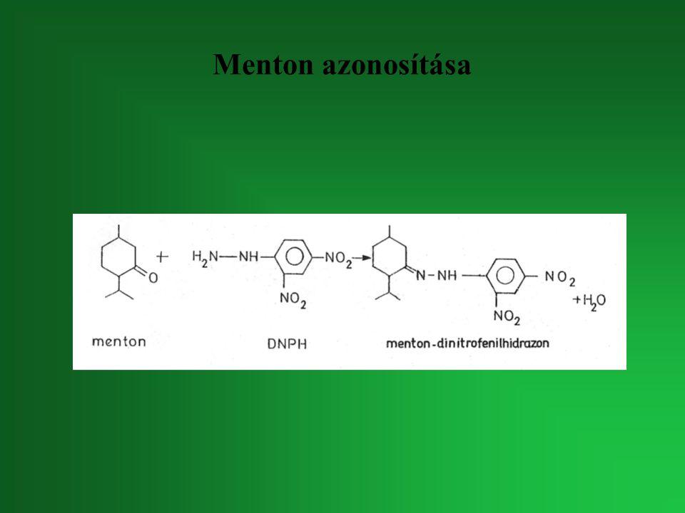 Menton azonosítása