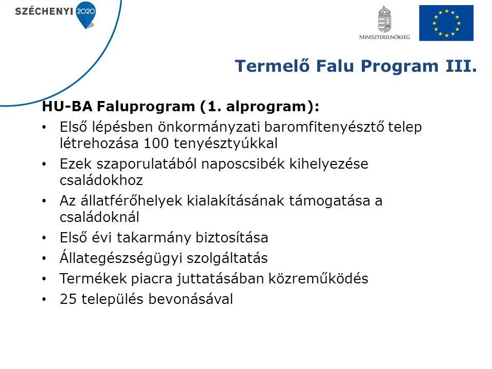 Termelő Falu Program III.