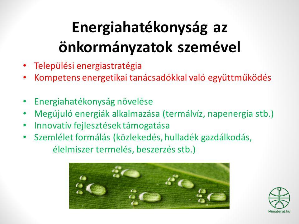 Energiahatékonyság az önkormányzatok szemével