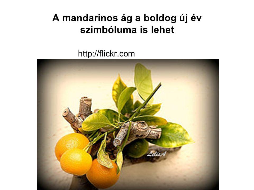 A mandarinos ág a boldog új év szimbóluma is lehet