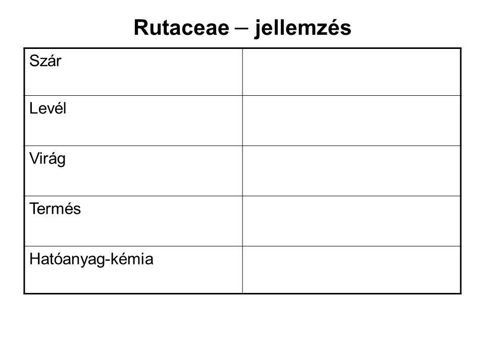 Rutaceae – jellemzés Szár Levél Virág Termés Hatóanyag-kémia