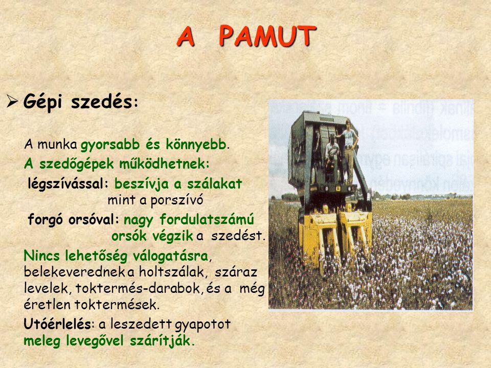 A PAMUT Gépi szedés: A munka gyorsabb és könnyebb.