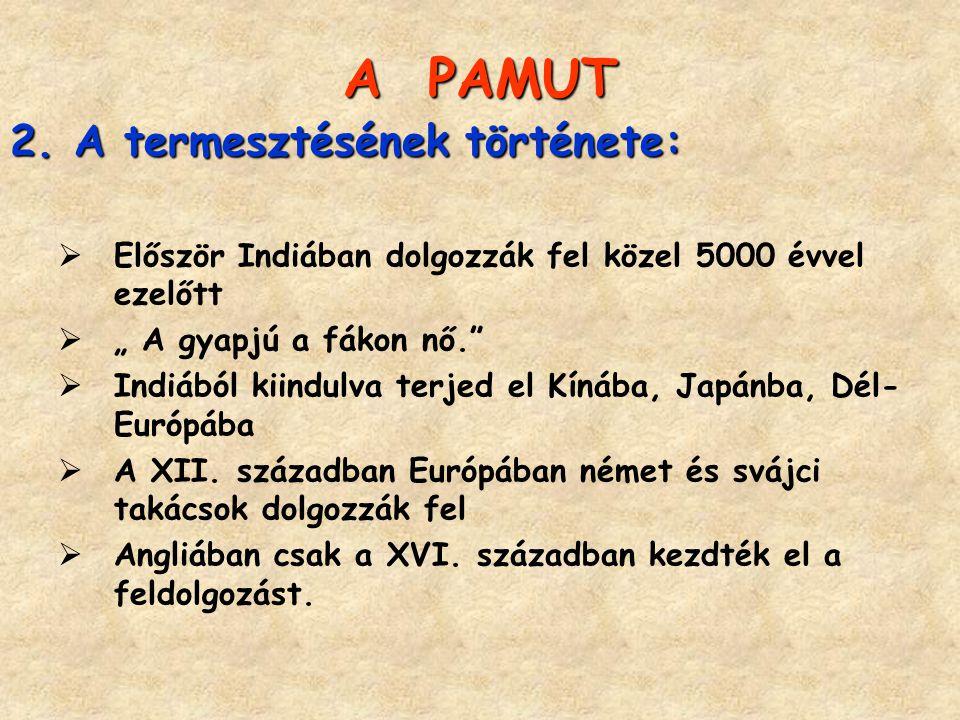 A PAMUT A termesztésének története: