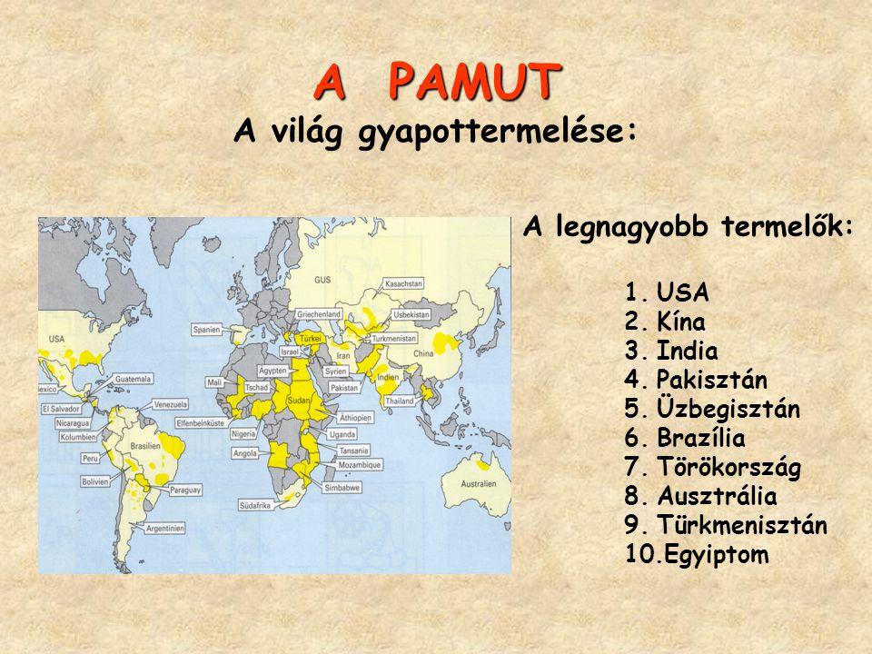 A PAMUT A világ gyapottermelése:
