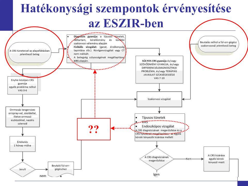 Hatékonysági szempontok érvényesítése az ESZIR-ben