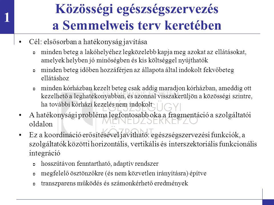 Közösségi egészségszervezés a Semmelweis terv keretében