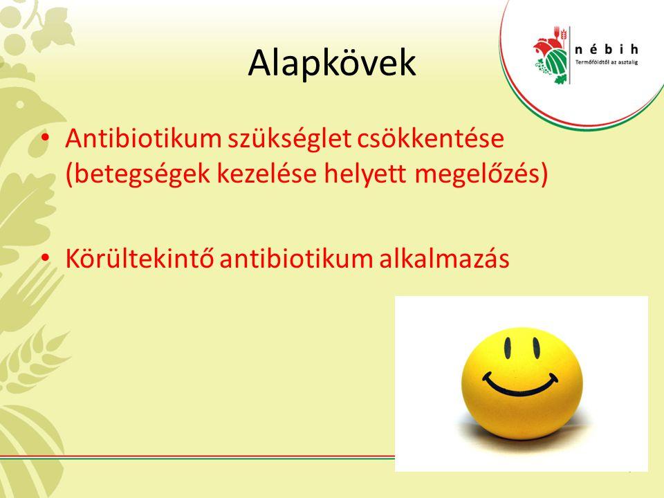 Alapkövek Antibiotikum szükséglet csökkentése (betegségek kezelése helyett megelőzés) Körültekintő antibiotikum alkalmazás.
