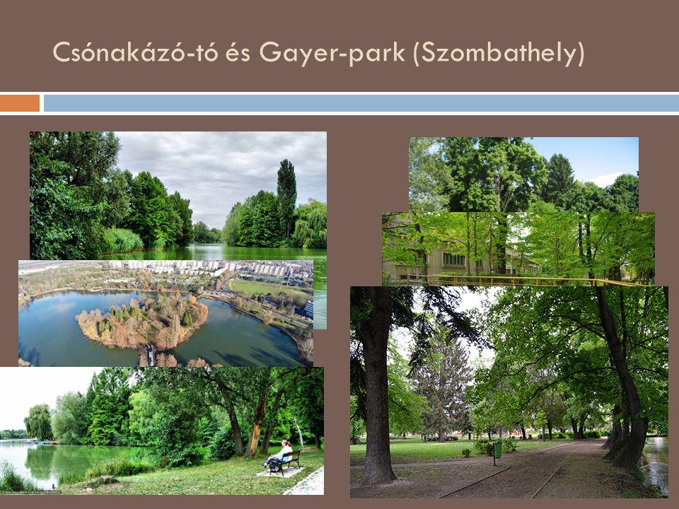 Csónakázó-tó és Gayer-park (Szombathely)