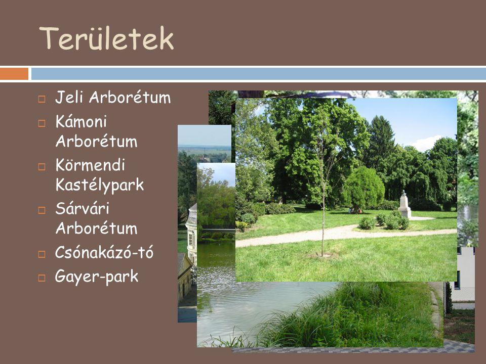 Területek Jeli Arborétum Kámoni Arborétum Körmendi Kastélypark