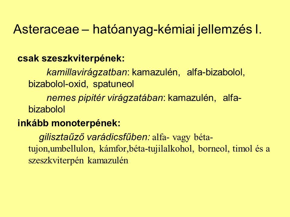 Asteraceae – hatóanyag-kémiai jellemzés I.