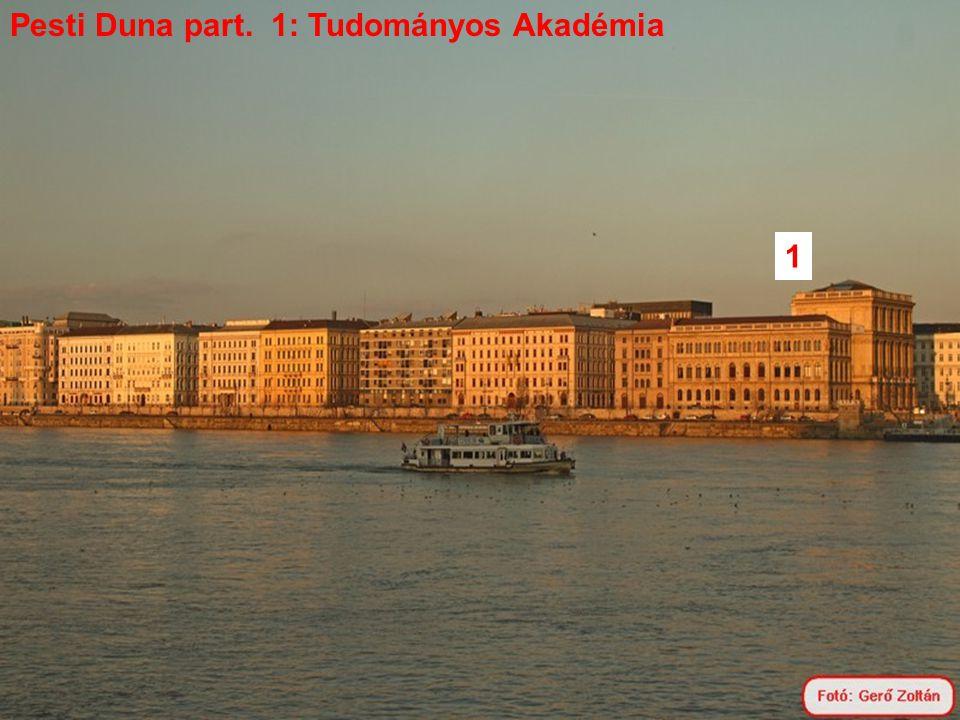 Pesti Duna part. 1: Tudományos Akadémia