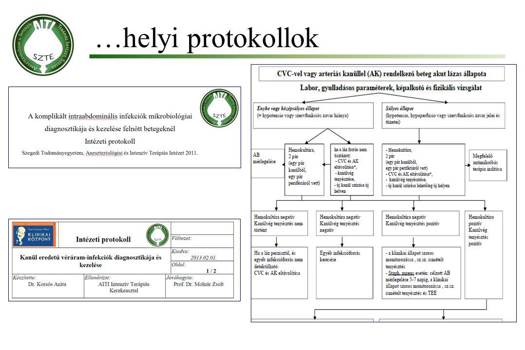 …helyi protokollok