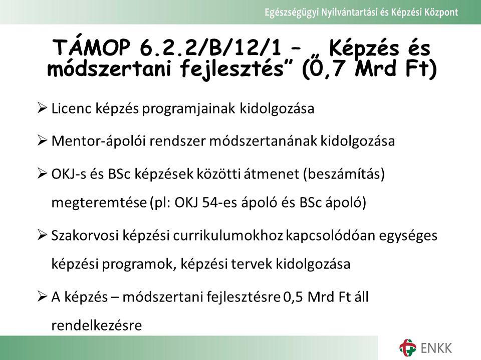 """TÁMOP 6.2.2/B/12/1 – """" Képzés és módszertani fejlesztés (0,7 Mrd Ft)"""