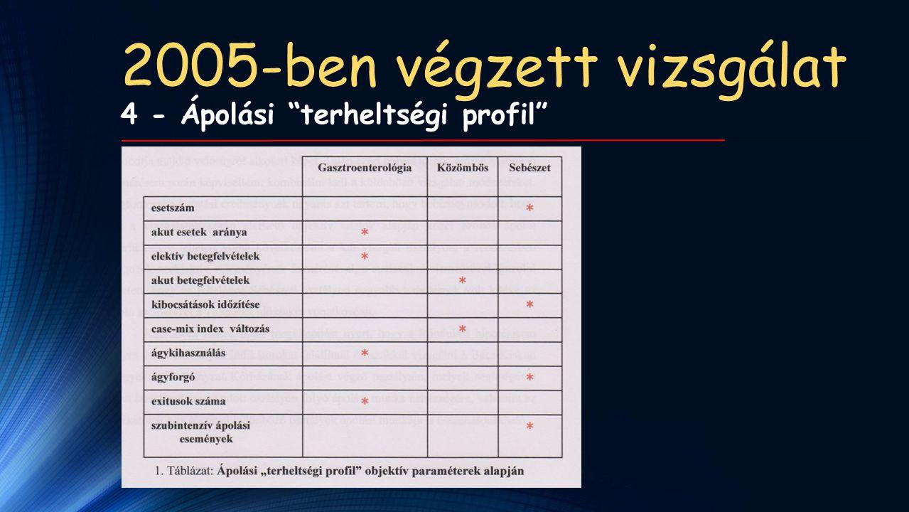 2005-ben végzett vizsgálat 4 - Ápolási terheltségi profil