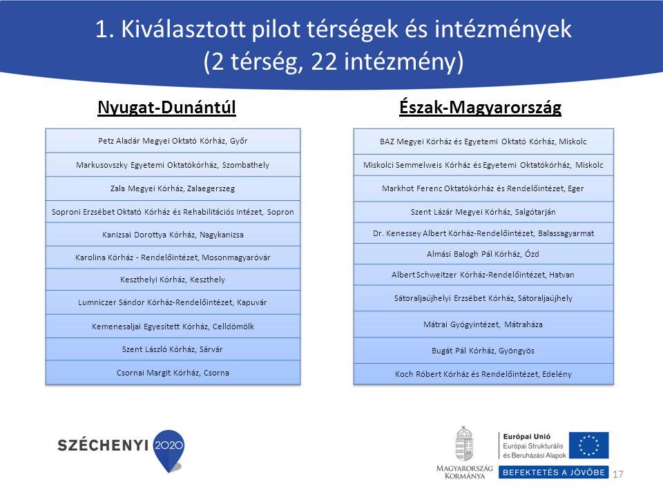 1. Kiválasztott pilot térségek és intézmények (2 térség, 22 intézmény)
