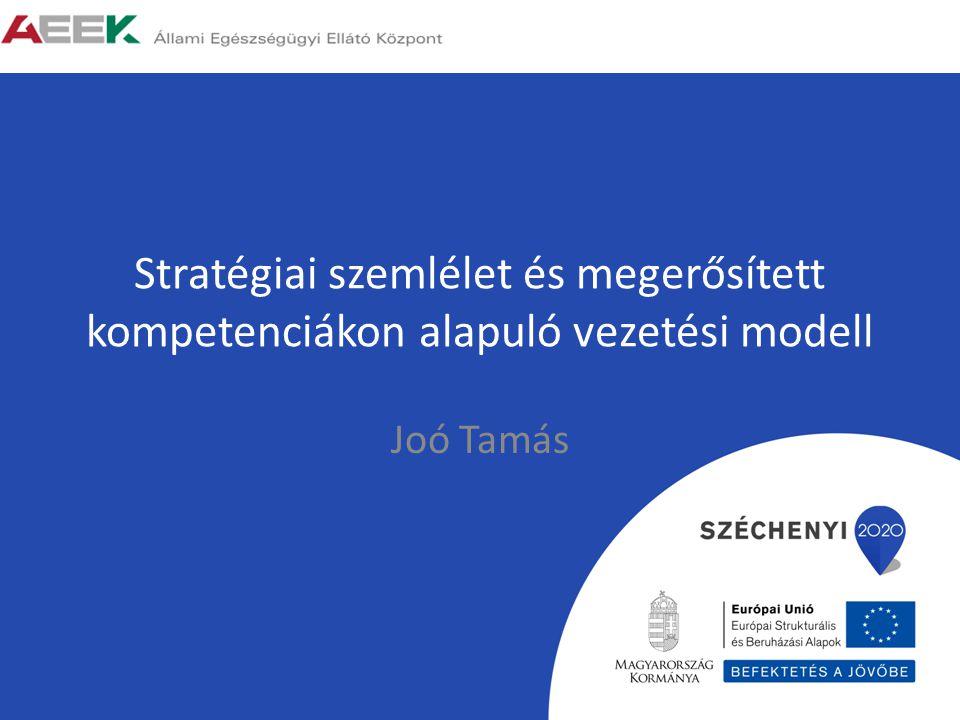 Stratégiai szemlélet és megerősített kompetenciákon alapuló vezetési modell