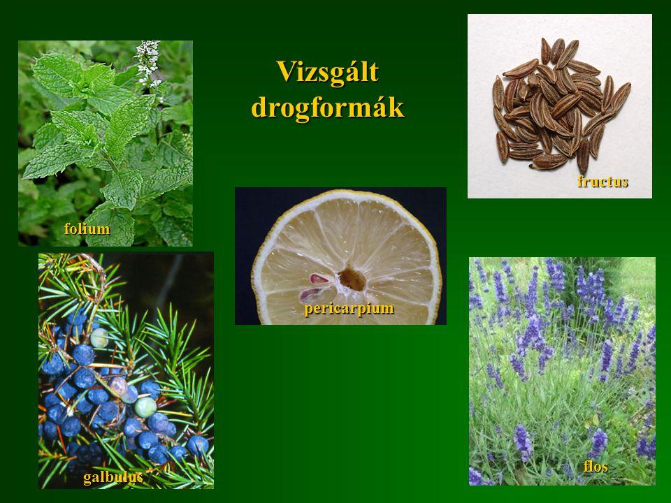 Vizsgált drogformák fructus folium pericarpium flos galbulus