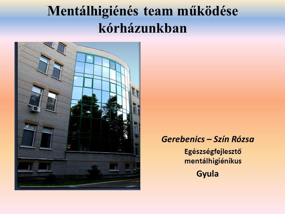 Mentálhigiénés team működése kórházunkban