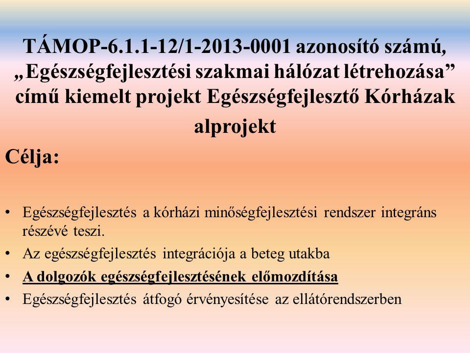 """TÁMOP-6.1.1-12/1-2013-0001 azonosító számú, """"Egészségfejlesztési szakmai hálózat létrehozása című kiemelt projekt Egészségfejlesztő Kórházak"""