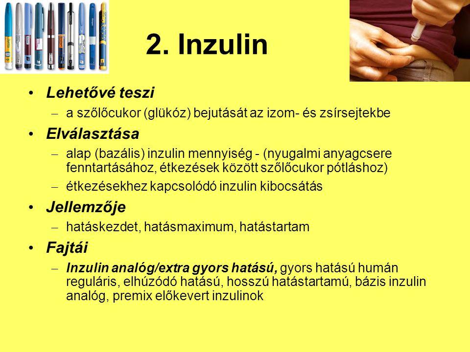 2. Inzulin Lehetővé teszi Elválasztása Jellemzője Fajtái