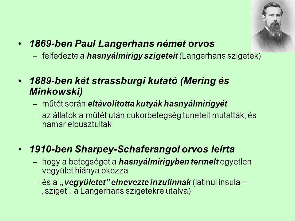 1869-ben Paul Langerhans német orvos