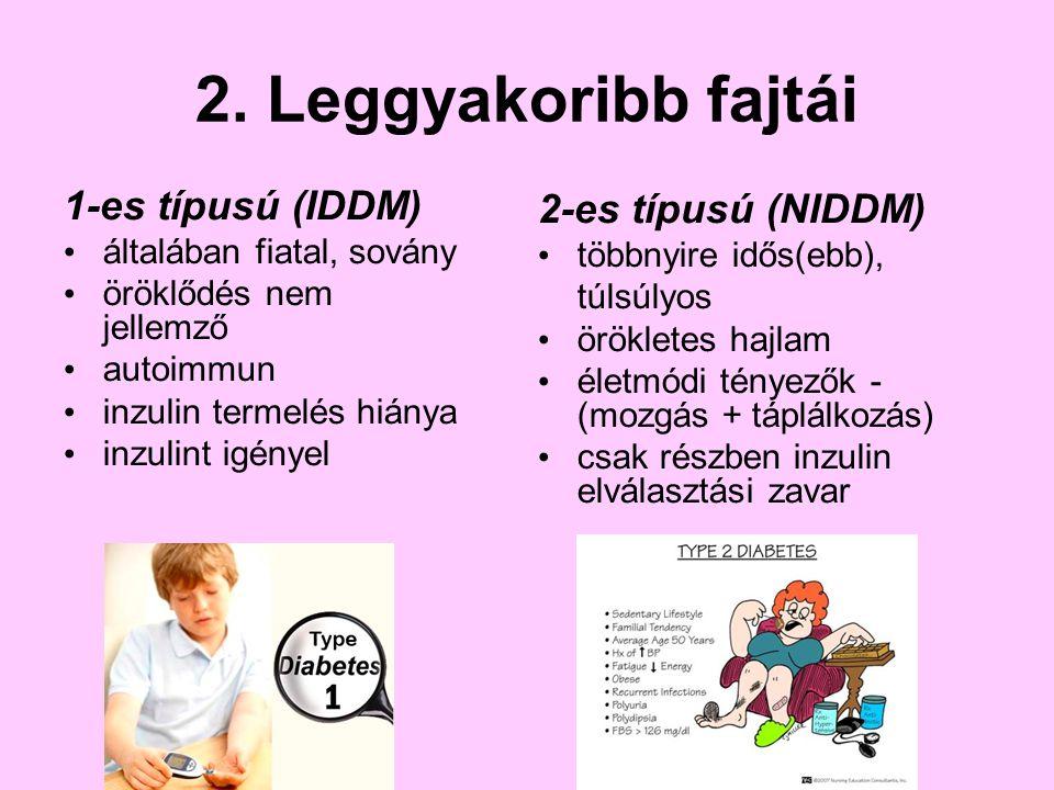 2. Leggyakoribb fajtái 1-es típusú (IDDM) 2-es típusú (NIDDM)
