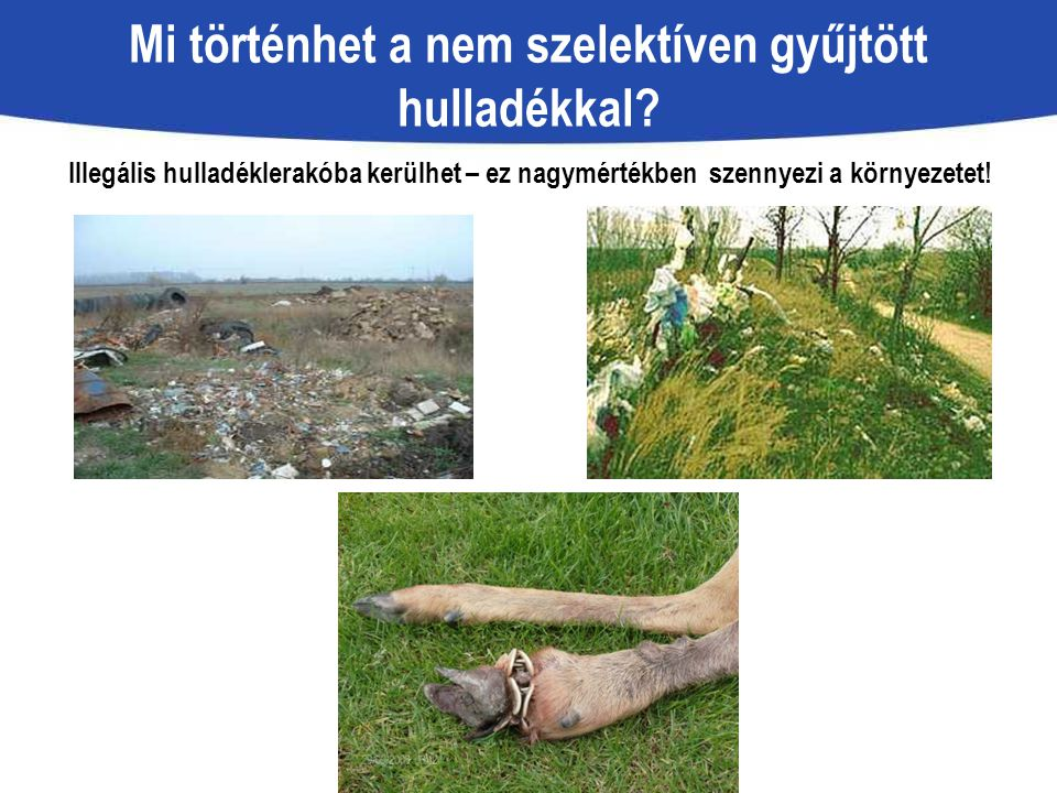 Mi történhet a nem szelektíven gyűjtött hulladékkal