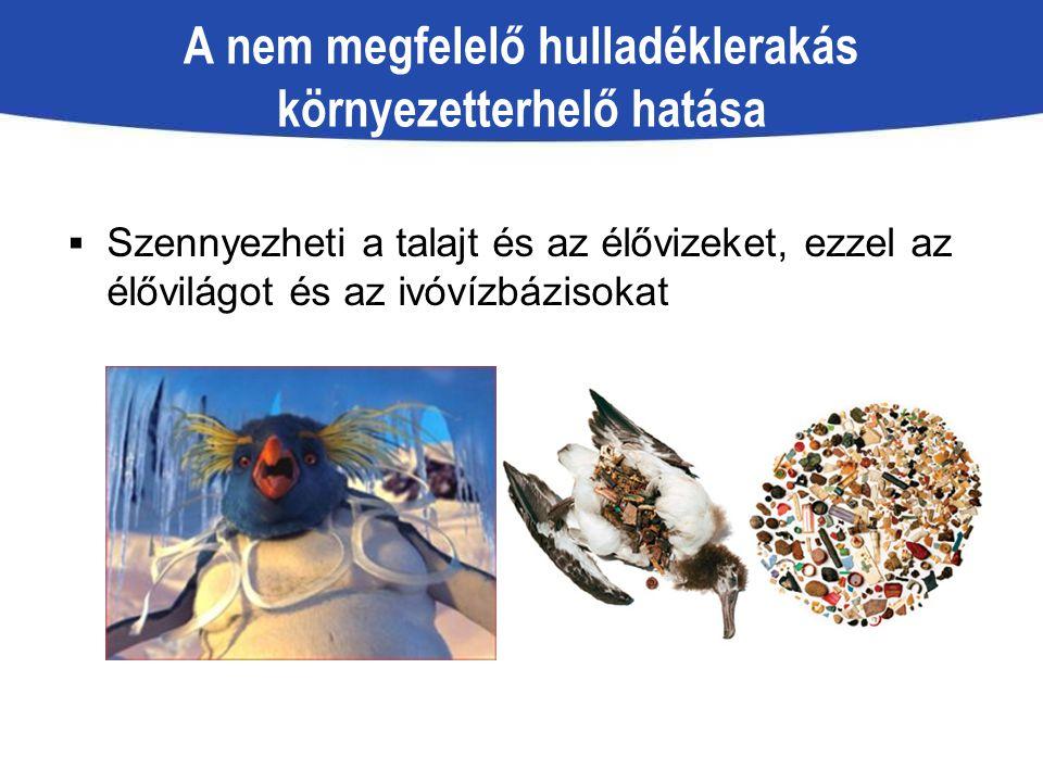 A nem megfelelő hulladéklerakás környezetterhelő hatása