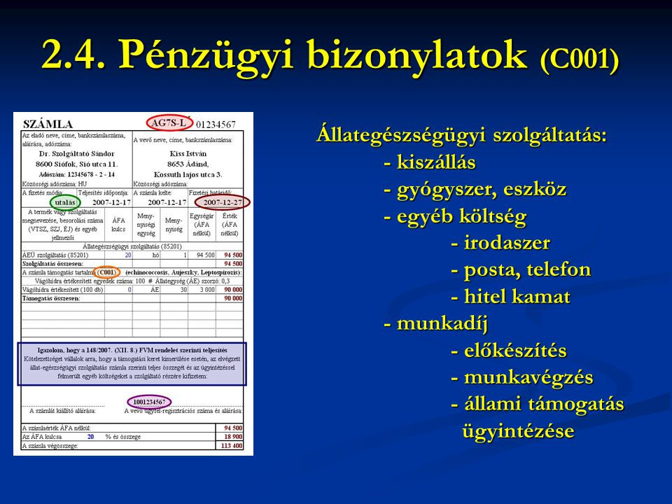 2.4. Pénzügyi bizonylatok (C001)