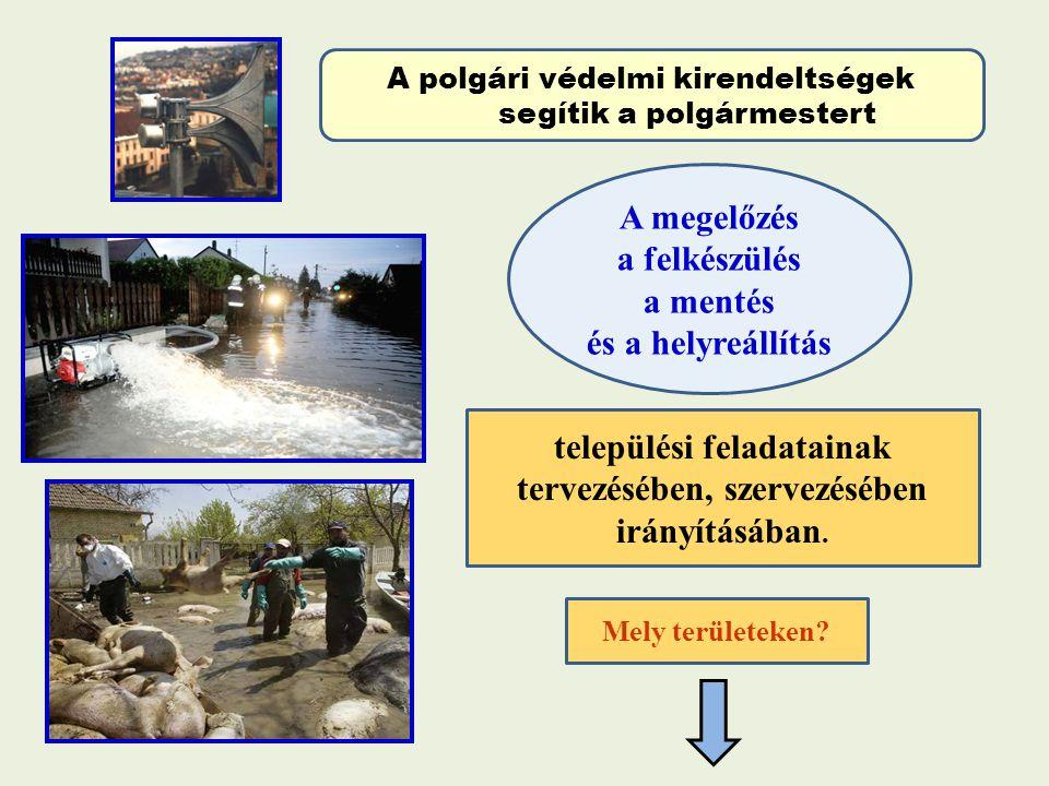 települési feladatainak tervezésében, szervezésében irányításában.