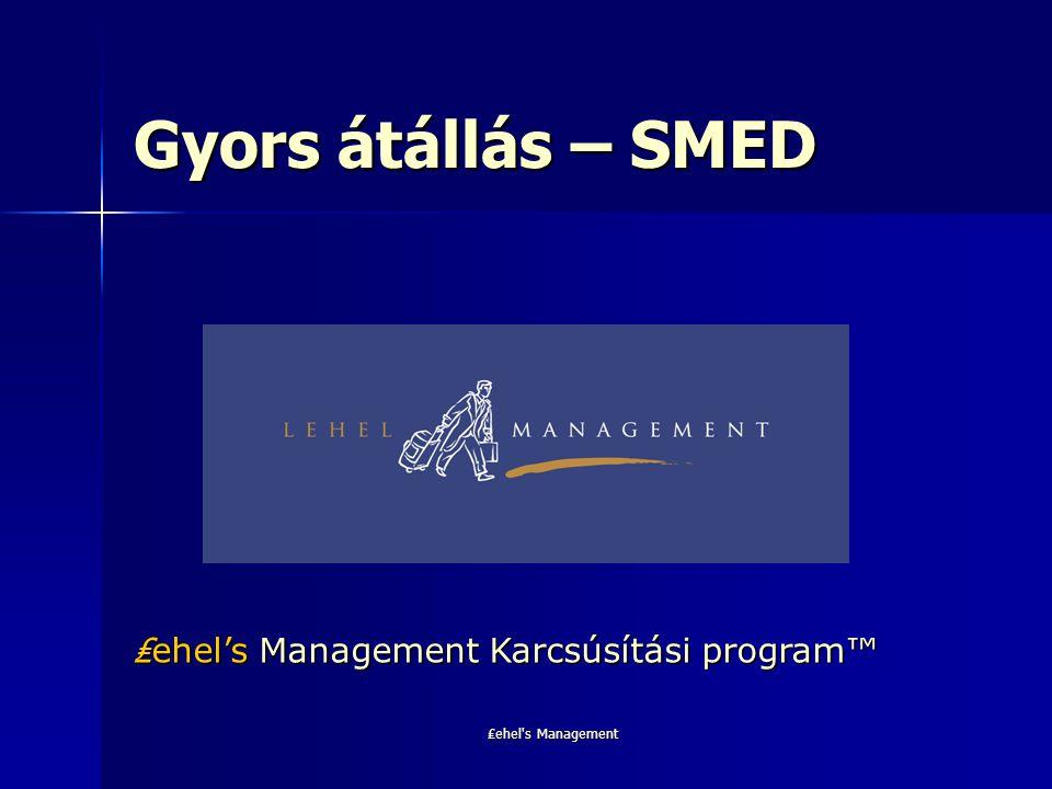 Gyors átállás – SMED ₤ehel's Management Karcsúsítási program™