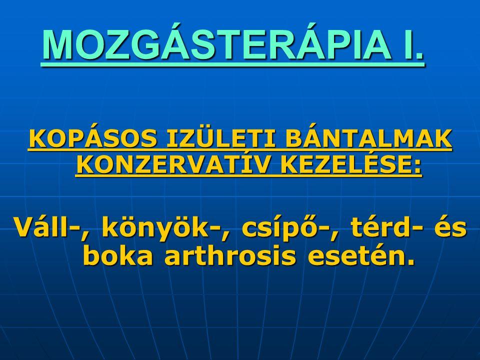 MOZGÁSTERÁPIA I.