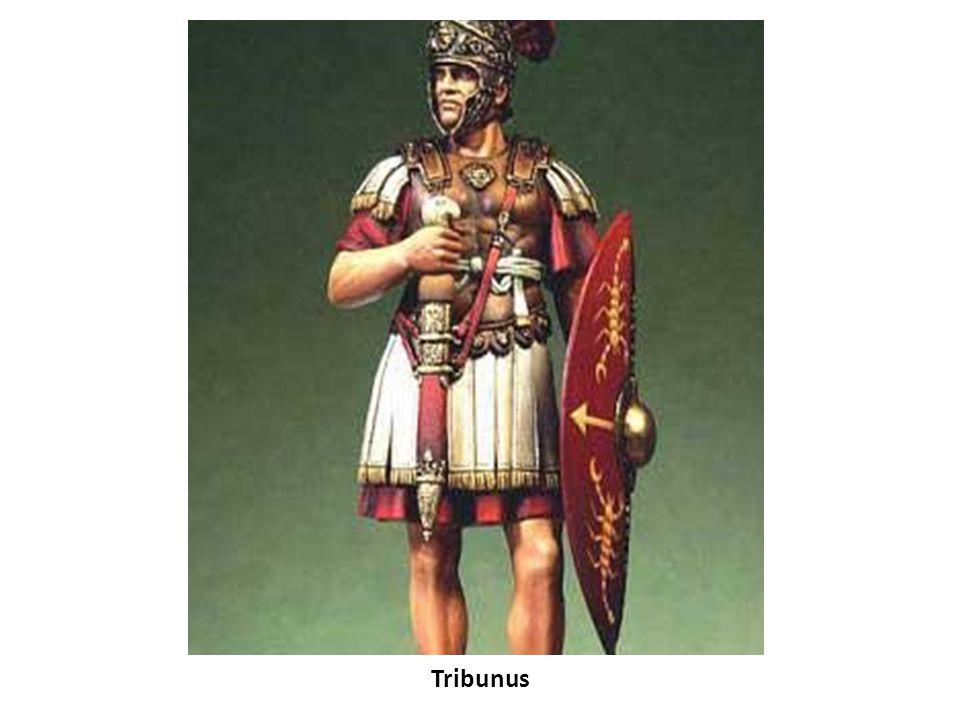 Tribunus