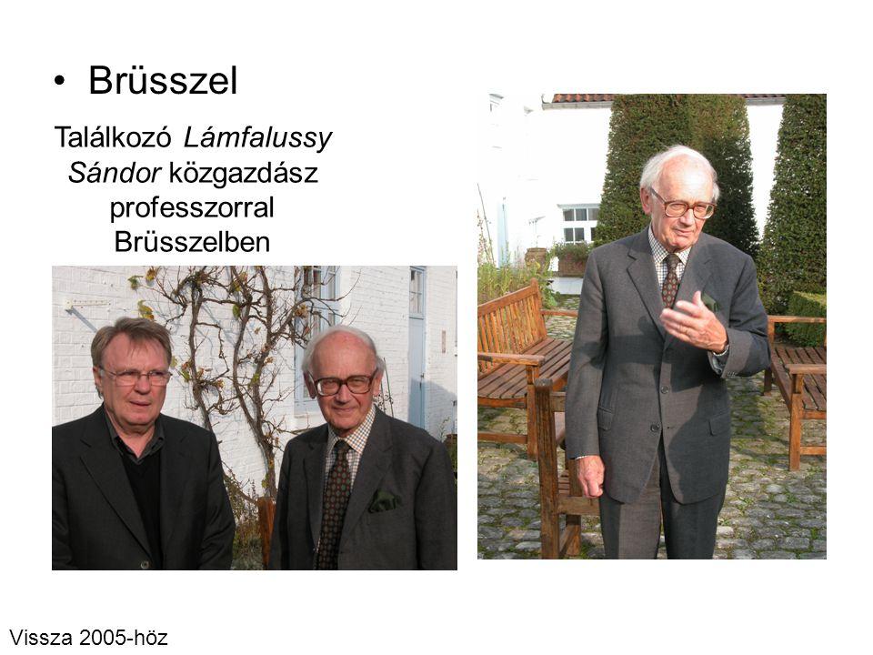 Találkozó Lámfalussy Sándor közgazdász professzorral Brüsszelben