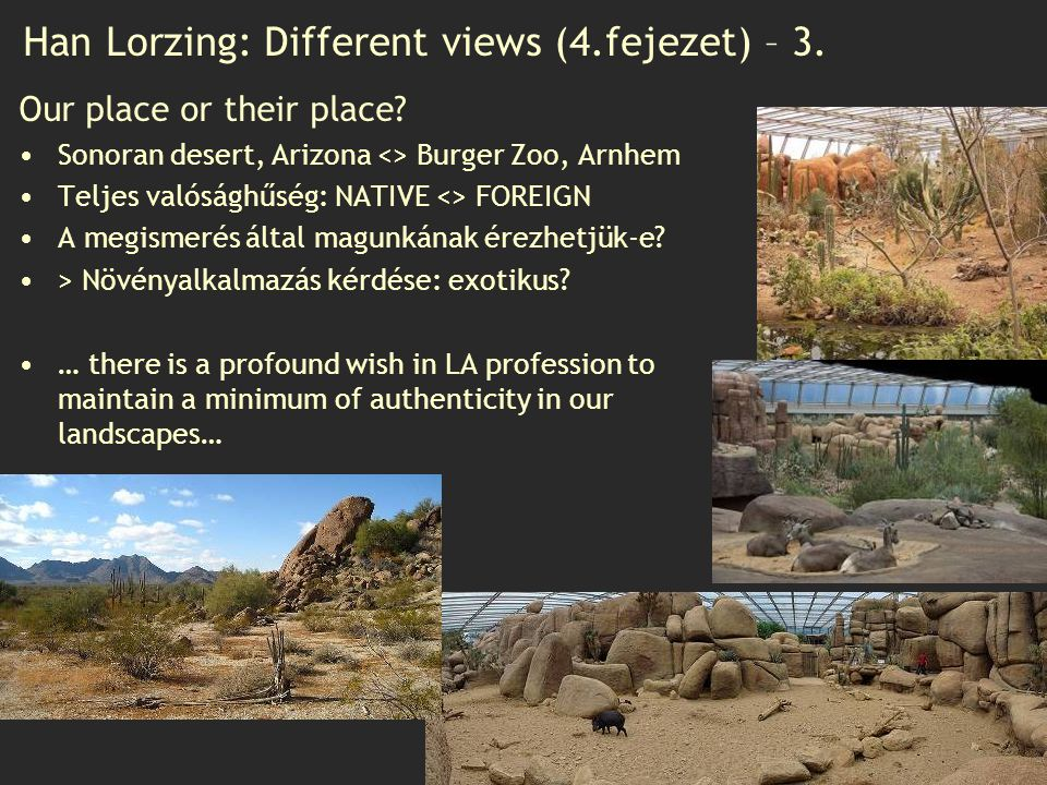 Han Lorzing: Different views (4.fejezet) – 3.