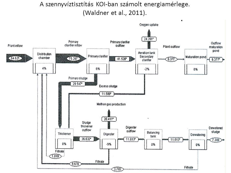 A szennyvíztisztítás KOI-ban számolt energiamérlege. (Waldner et al