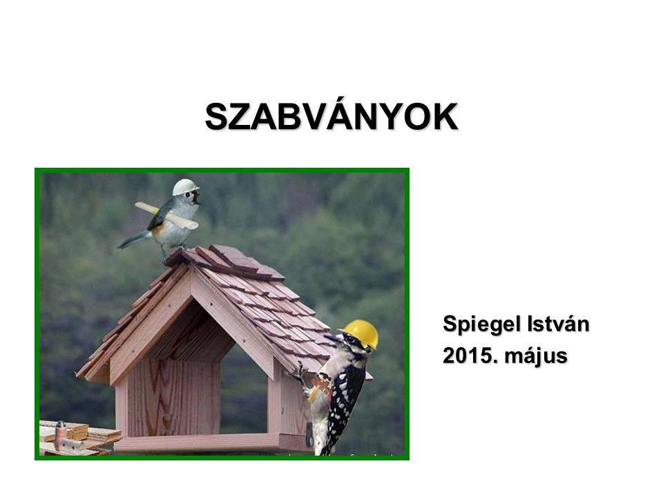 SZABVÁNYOK Spiegel István 2015. május