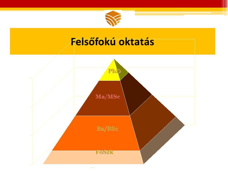 Felsőfokú oktatás PhD Ma/MSc Ba/BSc FoSzk