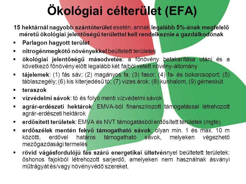 Ökológiai célterület (EFA)