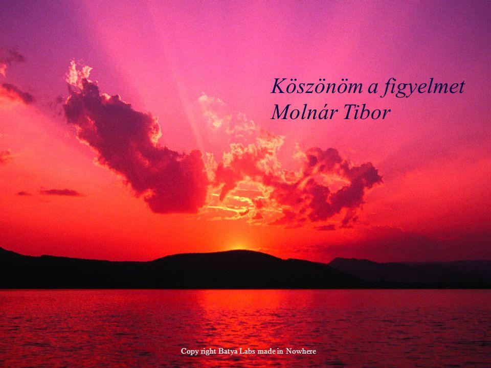 Köszönöm a figyelmet Molnár Tibor