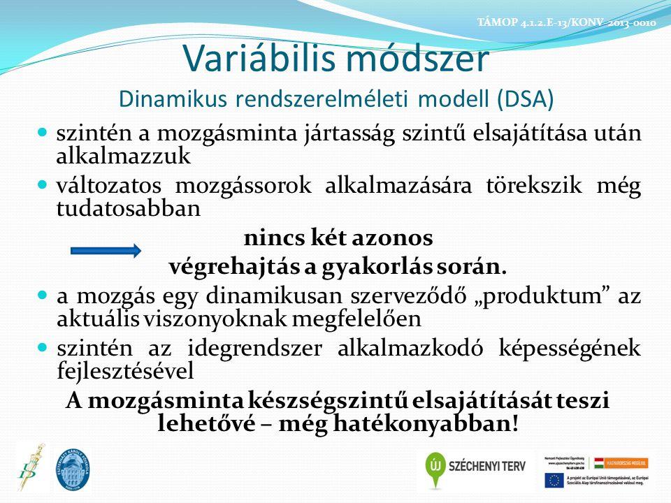 Variábilis módszer Dinamikus rendszerelméleti modell (DSA)